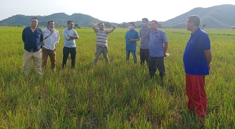Mnaipur farmers